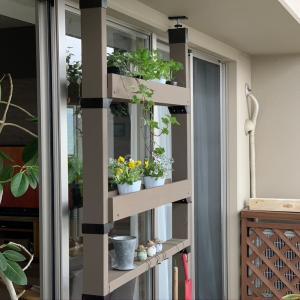 DIYの必須アイテムLABRICOを使ってバルコニーに花置き棚を作ってみました。室内からも緑を感じる魅力的な演出になりました。
