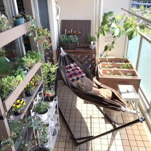 ベランダに【癒しの寛ぎスペース】をつくる!ポカポカ心地よい日はここで過ごします。