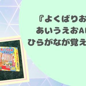 知育絵本『よくばりおけいこ あいうえお ABC』がひらがな練習におすすめのおもちゃだった!