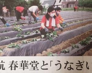 ソラトブ焼き芋プロジェクト 春華堂・日本航空中部地区
