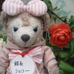 薔薇が咲いたよ サマーソング ラローズドゥモリナール 他にも❣ 館長シェリー より