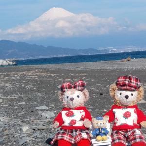 富士山 真っ白に雪化粧 三保の松原から
