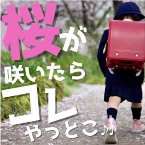 入学写真は桜の開花予想をチェックして事前に写真の前撮りがおすすめです☆
