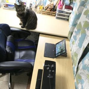 作業用の新しい机