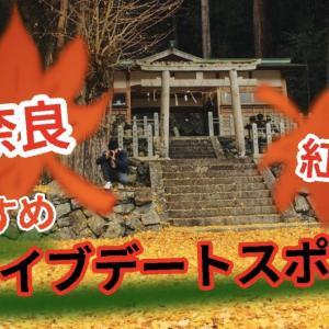 【奈良】紅葉を楽しむ!ドライブデートおすすめスポットまとめ
