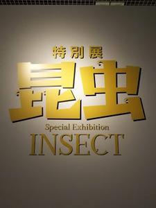 特別展 昆虫/国立科学博物館/2018.07