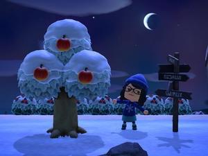 はじめてのどうぶつの森【あつ森プレイ日記166】雪の積もる島