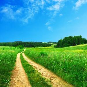自分がやりたいことは、自分が一番知っている【人生には宝石が散りばめられている】
