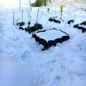 キッチンガーデンの雪かき