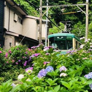 神奈川県 鎌倉散策 御霊神社 紫陽花と江ノ電