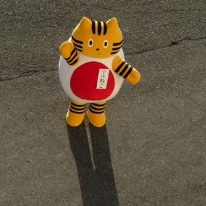 阪九フェリーのふねこ、新門司港で「やまと」のお見送りをする