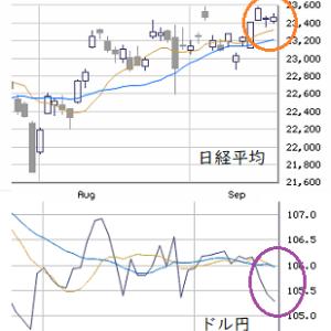東京市場(9/16) 中小型株需給に変化の兆し