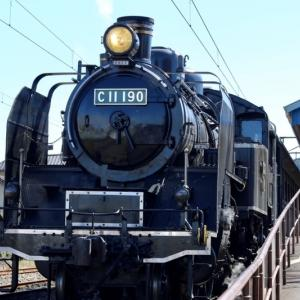 【C11 190号機が復帰】大井川鐵道の「SLかわね路号」に乗ってきました!