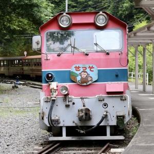 大井川鐵道の「南アルプスあぷとライン」|日本で唯一のアプト式鉄道