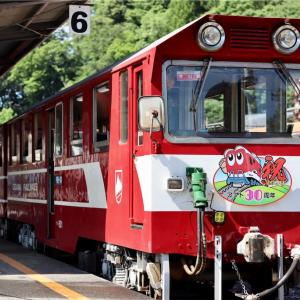 大井川鐵道ずらし旅|奥大井湖上駅とSLかわね路号に乗車[旅行記]
