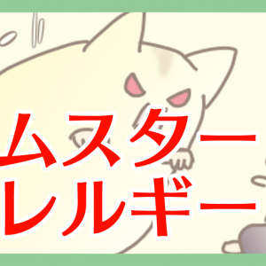 【ハム漫画034】ハムスターアレルギー