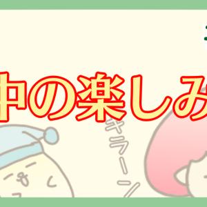 【ハム漫画041】夜行性ハムスターの日中の楽しみ方