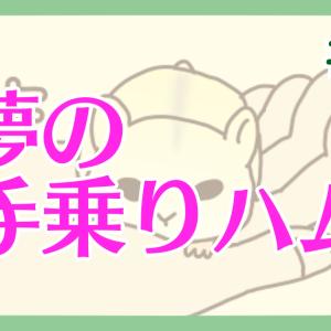 【ハム漫画064】夢の手乗りハム
