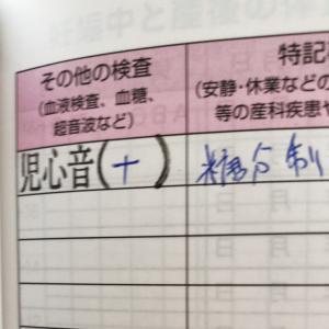 【2回目の妊婦健診】糖分制限発令①