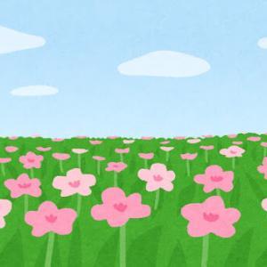 草木も花も成仏できる。