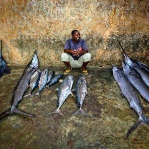 【筋肉を作る魚】海の中でもマッチョな魚 カジキでダイエット♪