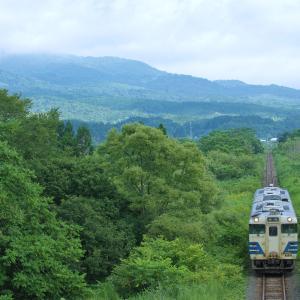 盛夏の津軽線:大川平~今別,一面の緑にキハ40。
