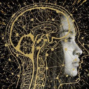 「瞑想で記憶力が高まる」大野元郎