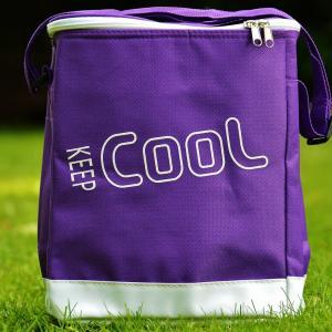 エコバッグ レジカゴ 保冷ができて折りたたみのおしゃれな人気の商品