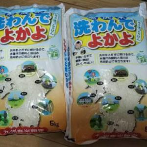 無洗米 10kgを通販でリピート!安いけどチンしても美味しいおすすめのお米
