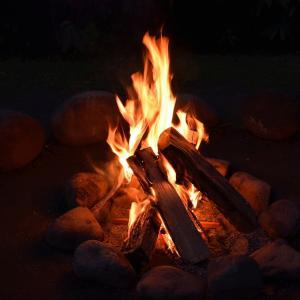 なぜ木を燃やしているだけの焚き火という行為に魅力を感じるのか