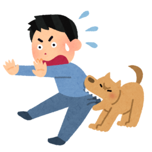 愛犬が『噛む』理由