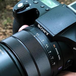 RX10M4でカワセミ撮影