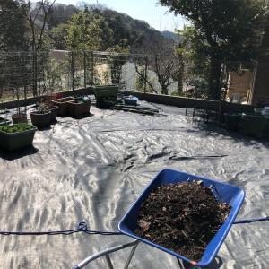 2年がかりで菜園が完成!