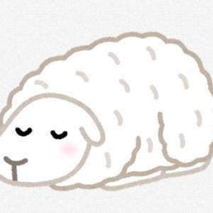 不安で眠れない日にやってはいけないこと、おすすめしたいこと