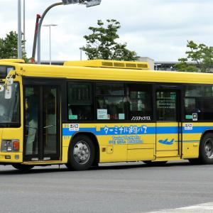 成田空港交通 517