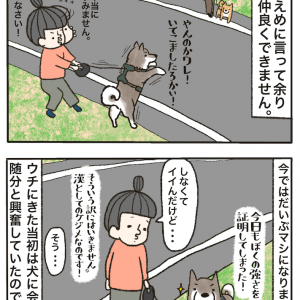 テツvs小型犬