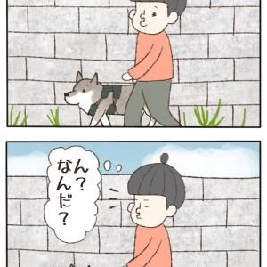 続・異文化コミュニケーション!!