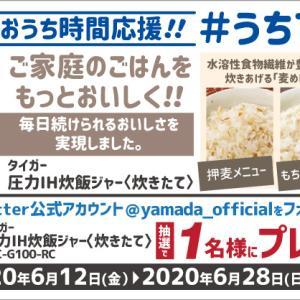 4万2千円以上商品が当たる!ヤマダ電機のタイガー圧力IH炊飯ジャープレゼントキャンペーンが始まりました【応募期限5月31日】