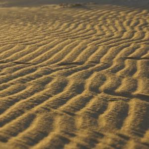 リビア砂漠