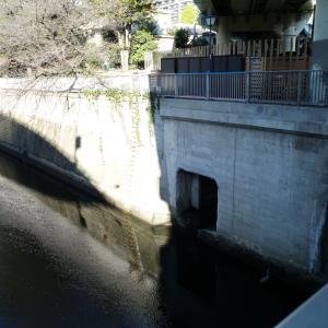 東京暗歩;池袋地名ゆかりの池から湧き出る弦巻川を追って神田川へ【護国寺西〜江戸川橋編】