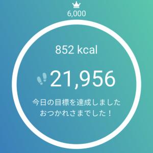 20,000歩 歩いて800kcal消費