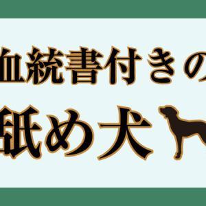血統書付きの舐め犬(2020年4月)