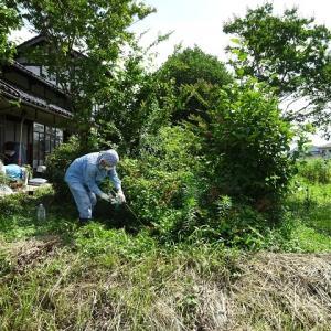 我が家の庭の植木の剪定「モチベーシヨンアップの極意」ヒント 133 「過疎を逆手にとる会」2代目会長 中田正俊さん