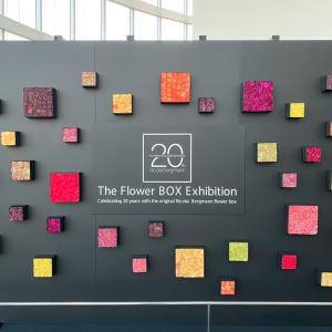 ニコライバーグマン The Flower BOX Exhibition