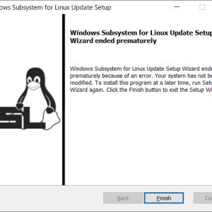 WSL2とVirtualBoxの相性が悪い