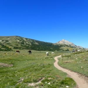 [海外編]2019年に歩いた登山・ハイキングルートをランキングしてみた