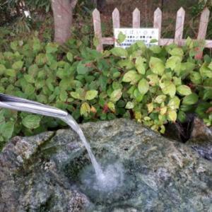 北アルプスの天然水、安曇野の美味しい水「つくばいの水」【無料】