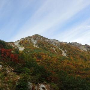 【日帰り登山@針ノ木岳・蓮華岳②】樹林帯からチラっと見える稜線最高。後ろ振り向いても絶景。なんなんだココは!?!?笑