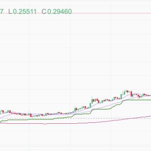 ドージコインが1DOGE、70円を越える!何が起こったのか?