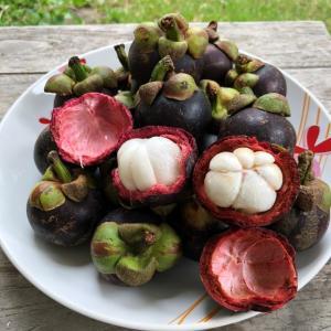 タイ人妻が教えるマンゴスチンのおいしい食べ方(果物の女王!)